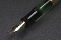 Pelikan-112-Diamond-Section.jpg